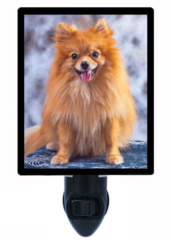 Pomeranian Night Light
