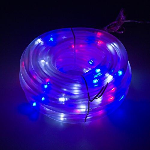 100 Led Christmas Lights Power in Florida - 6