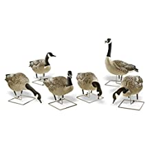 Avian X AX Goose Fusion Honker Decoy (6 Pack), Grey