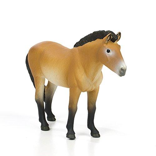 - Safari Ltd. Winner's Circle Horses - Przewalski's Horse - Phthalate, Lead and BPA Free - For Ages 3+