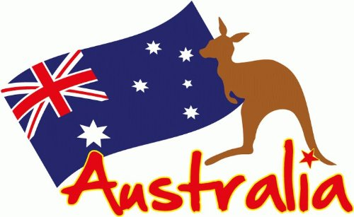 Amazon com australia kangaroo animal flag car bumper sticker decal 5x 4 home kitchen