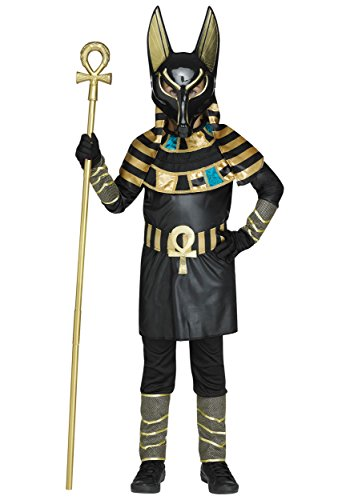 Fun World Men's Anubis Boys Costume Adult Costume, Multi, Standard