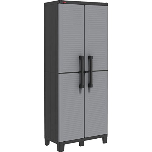2 Door Storage Cabinet, Finish: Black and gray