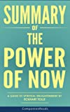 img - for Summary of The Power of Now: A Guide to Spiritual Enlightenment by Eckhart Tolle book / textbook / text book