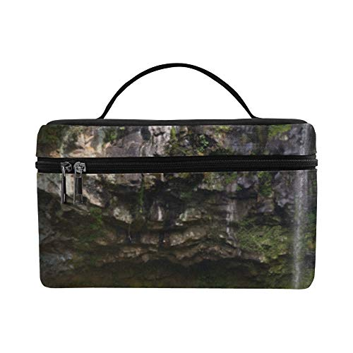 Spectacular Cliffs And Waterfalls Pattern Lunch Box Tote Bag Lunch Holder Insulated Lunch Cooler Bag For Women/men/picnic/boating/beach/fishing/school/work