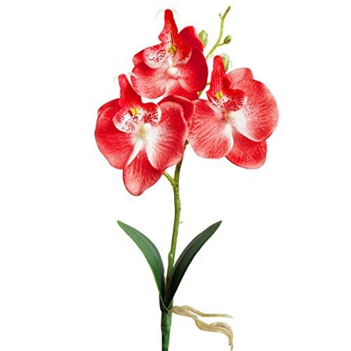 Willsa 3 Heads Artificial Butterfly Orchid Flowers Arrangements Bridal Home DIY Floor Garden Office Wedding Decor (Red)
