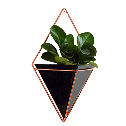 Large Hanging Planter Vase Air Plant Pot Wall Succulents Decor Container Geometric Characteristic Living Room Decorations, Black (Decorative For Wall Hangings Hangers)