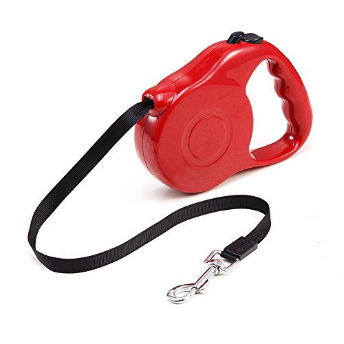 Aipet Retractable Dog Leash - 10 Feet Pet Leash Ribbon Lead for Training, Backyard Use and Walking Dogs - Easy to Grip Handle - Pet Training (Ribbon Dog Leash)