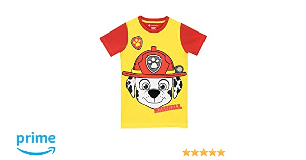 44519c1e Paw Patrol Boys Paw Patrol Marshall T-Shirt Size 7: Amazon.ca: Clothing &  Accessories