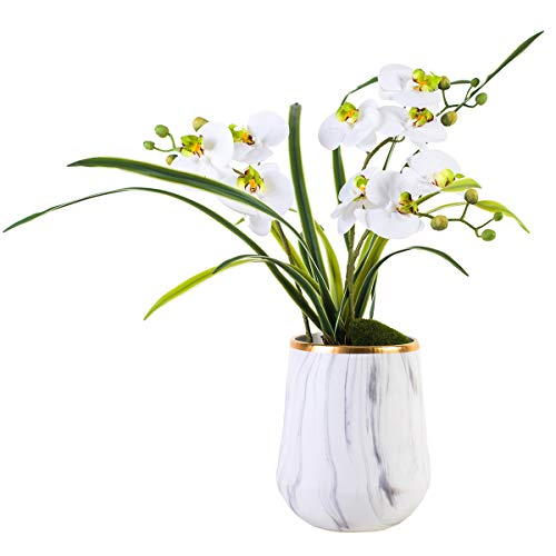 (Fudostar Artificial Silk Moth Orchid Flowers Potting in Marble Color Ceramic Vase with Gold Planting, Natural Looking Phalaenopsis Flowers and Greens)