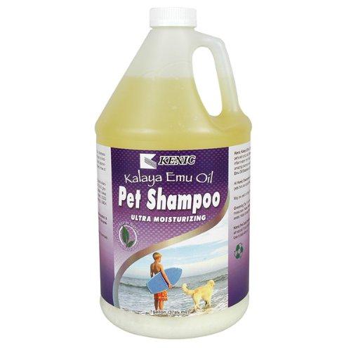Kalaya Emu Oil Moisturizing Shampoo – Gallon, My Pet Supplies