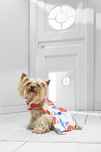 [Toy Dog Sundress For Yorkie Maltese Shih Tsu Pom Chihuahua Papillon Lhasa Apso (Small Toy Size, white, red,] (Mini Dachshund Halloween Costumes)