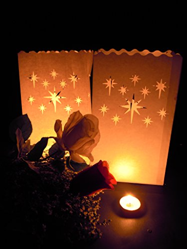 Fascola White Luminary Bags - 10 Count - Stars Design - Flame Resistant Paper - Christmas Holiday Outdoor Decorations - Party and Event Decor - Luminaria Candle Bag - Ten Bags (Stars 2) by Fascola