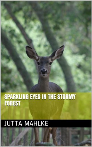 Sparkling Eyes in the Stormy Forest (dual-language ebook Book 8)