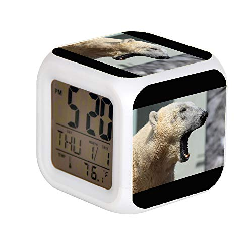 JHSIT 7 Color Change LED Digital Alarm Clock with Date Alarm Thermometer Desktop Table Cube Alarm Clock Child Home Selective Focus Photography of White Polar Bear Opening Mouth