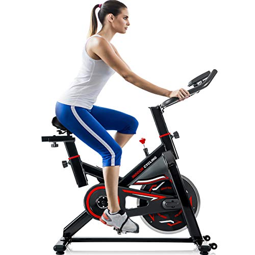 Merax Indoor Cycling Bike Cycle Trainer Exercise Bicycle (Red2019)