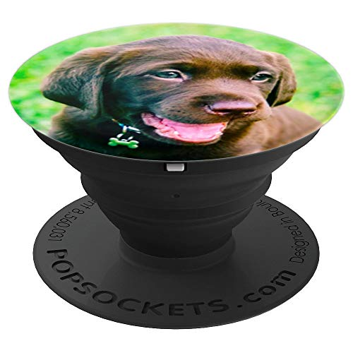 Chocolate Lab Puppy Dog Cute Smiling Face Photo Dogs Gift - PopSockets Grip and Stand for Phones and Tablets (Chocolate Lab Puppies)