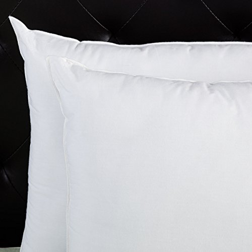 Splendorest Jumbo Sham Stuffer Pillows (Set of 2)