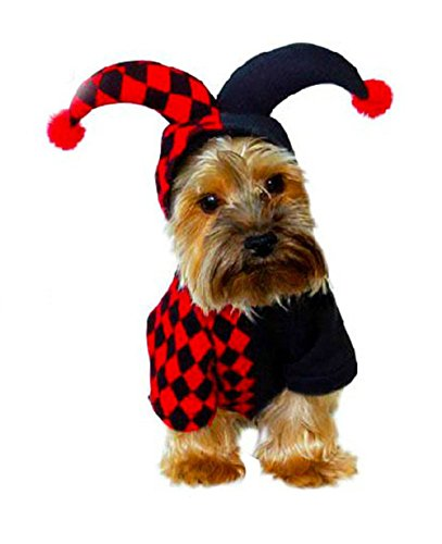 Freerun Pet Hooded Clown Costume for Small Dogs & Cats for Halloween Party Cosplay -L (Cosplay Store Near Me)