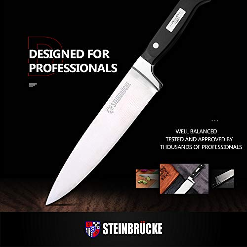 STEINBRÜCKE Chef\'s Knife - 10 Inch Pro Kitchen Knife, HRC58 German Stainless Steel, Sharp Chef Knife with Full Tang Ergonomic handle for Home Kitchen Restaurant
