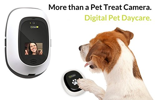 PetChatz HD PawCall: Digital Daycare two-way premium audio/HD video pet treat camera w/DOGTV, sound/motion triggered video recording, calming aromatherapy (as seen on The Today - Video Pet Chat
