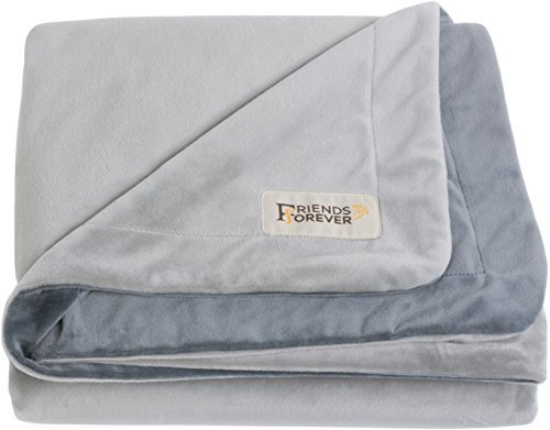 Large Friends Forever Deluxe Dog Blanket Throw 100% Pure Crystal Velvet, Soft Warm Fleece Pet Blanket for Dogs Cats Bed Couch Crate Kennel Car Trunk, Large