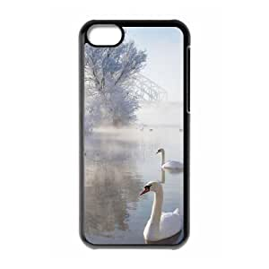 linJUN FENGIce And Snow The Unique Printing Art Custom Phone Case for ipod touch 5,diy cover case ygtg-296742