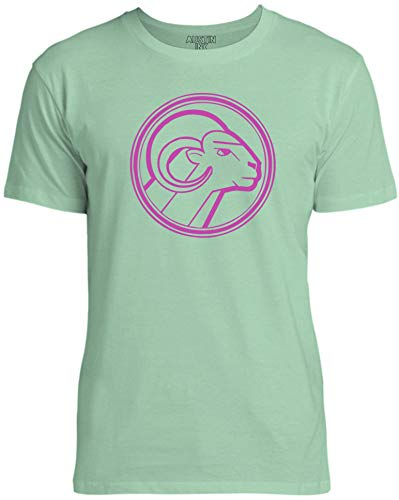Austin Ink Apparel Pink Aries Star Sign Unisex Womens Soft Cotton Tee, Mint Green, Large ()