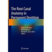The Root Canal Anatomy in Permanent Dentition