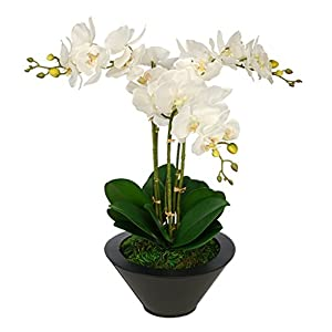 House of Silk Flowers Artificial White Triple Stem Orchid in Round Zinc Vase (Black) 103