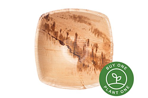 25 Heavy Duty Disposable and Home Compostable Party Bowls made from Palm Leaf • 6 inch Square