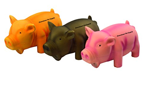 Downtown Pet Supply Squeaker Pig