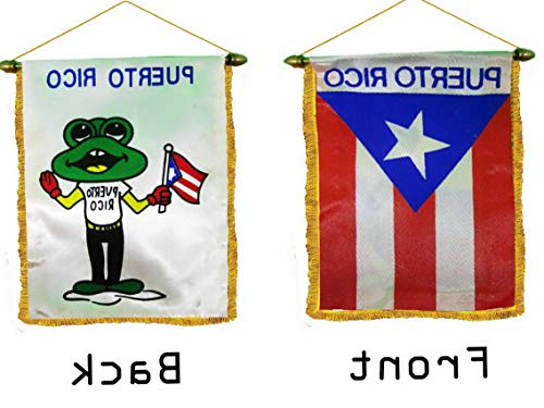 Kaputar Coqui Puerto Rico Mini Banner Flag for CAR Home Window Mirror Hanging 2 Sided | Model FLG - 7749