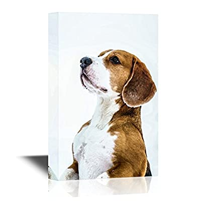Dogs Breeds Canvas Wall Art - Standing Funny Beagle Dog - Gallery Wrap Pet Art for Modern Home Art | Ready to Hang - 12x18 inches