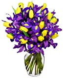 Flowers - Sunny Tulip and Iris Bouquet