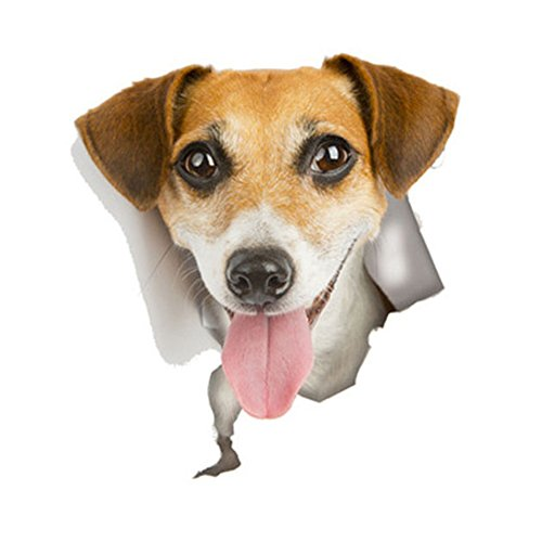 Jack Russell Beagle - 3D Wall Decal Sticker, [Adorable Jack Russell Terrier Dog] Removable Wall Art Sticker Decal - Perfect for Any DIY Room!