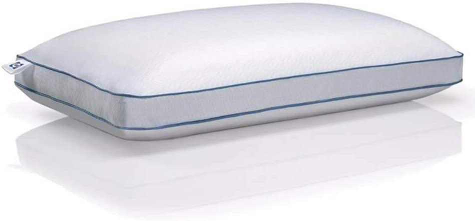 Sealy 15334115 Cooling Memory Foam Pillow