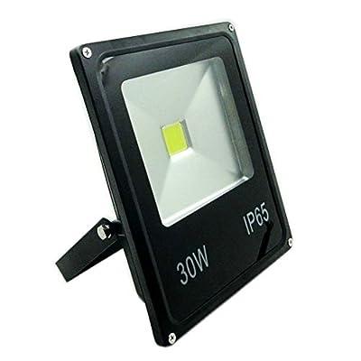 GLW? 30w 110v Outdoor Led Flood Lights Security Light, Waterproof Floodlight Lamp 2250lm 220w Halogen Bulb Equivalent