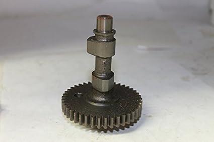 Amazon com: Briggs & Stratton 394800 Gear, CAM Ass Engine Parts