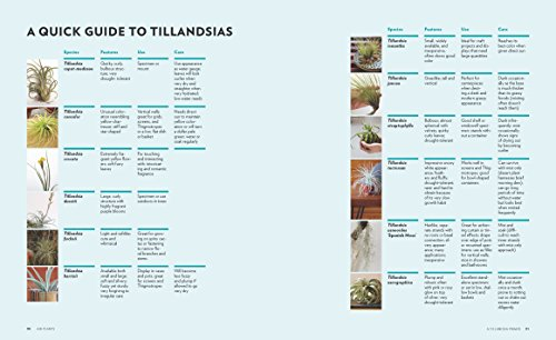 Air Plants: The Curious World of Tillandsias by Workman Publishing/Timber Press (Image #6)