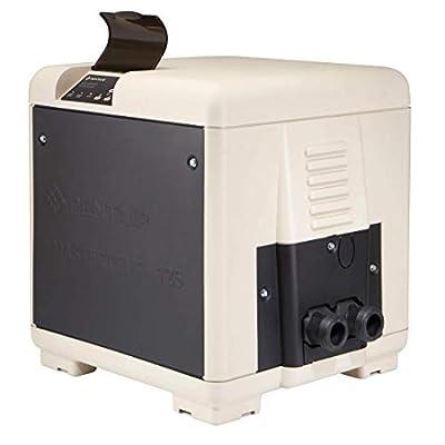 Pentair 461059 Master Temp 125K, BTU Heater