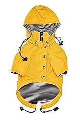 Yellow Zip Up Dog