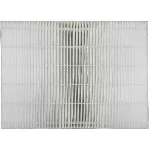 Sharp True Replacement Filter FZ A60HFU