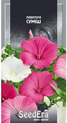 Lavatera Blend Annual Seeds Flowers Era from Ukraine 0.2 Gram