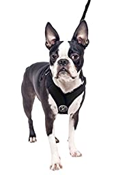 Gooby Choke Perfect Fit Active X Step-In Synthetic Lambskin Soft Harness for Dogs, Small - Black