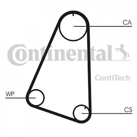 Continental Contitech ct504wp1 Bomba de agua + kit correa de distribución: Amazon.es: Coche y moto