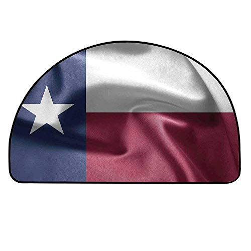 YOLIYANA Western Decor Entry Mat Rugs,State of Texas Flag Star Freedom Symbol Silk Fabric Surging by Wind Blow Looking Decorative for Front Door,21.6