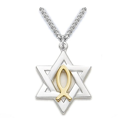 Sterling Silver Star of David with Gold Tone Ichthus Fish Pendant, 7/8 Inch