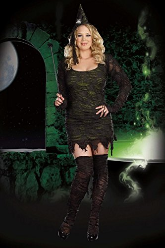 [Dreamgirl 7473X Wicked Wonderful Plus Size Witch Costume (As Shown;3X-4X)] (Sexy Witch Costumes Plus Size)