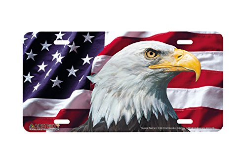 (Airstrike American Flag License Plate Patriotic Eagle Front License Plate Made in USA (Made of)